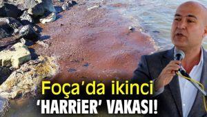 CHP'li Bakan Foça'daki çevre kirliliğini sordu!
