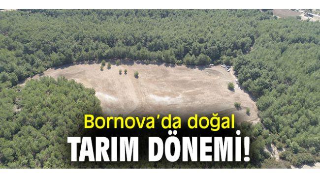 Doğal Tarım Çiftliği, Bornova'da açılacak!
