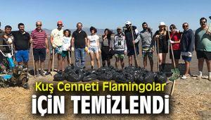 İzmir Kuş Cenneti Flamingo Adası'nda temizlik çalışması yapıldı!