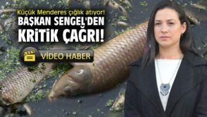 Küçük Menderes çığlık atıyor! Başkan Sengel'den kritik çağrı!