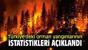 Türkiye'deki orman yangınlarının istatistikleri açıklandı
