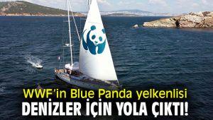 WWF'in Blue Panda yelkenlisi denizler için yola çıktı!